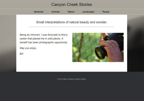 Canyon Creek Stories